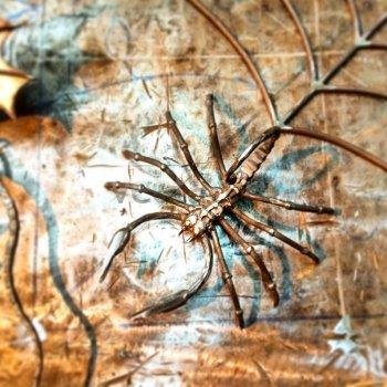 Кованый подарок #044 (паук)